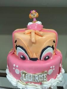 Gâteau de Stella de la Pat Patrouille